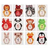 Jinyi 12 Piezas de Pegatinas mensuales, Pegatinas mensuales para...