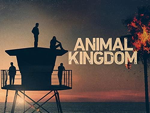 Animal Kingdom S5 Trailer
