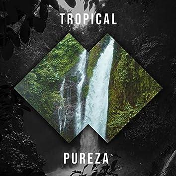 # 1 Album: Tropical Pureza