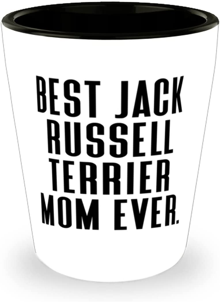 Best Jack Russell Terrier Department store Mom Shot Ever. Ter Opening large release sale Glass