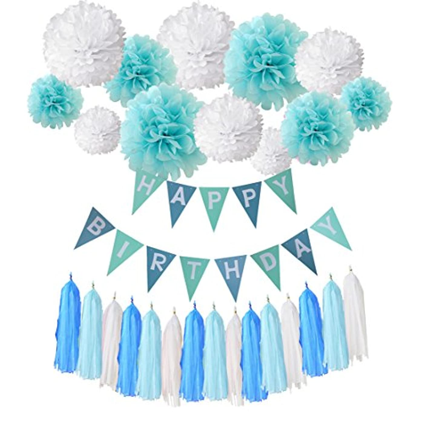 Wartoon Happy Birthday Banner Bunting Kit, Happy Birthday Hanging Party Decorations Banner flags +12 Garlands Tissue Paper Pom Poms flowers Ball + 15 tassels for Birthday Party Decorations (Blue1)
