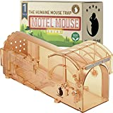Motel Mouse MAUSEFALLE LEBEND - Hochsensitiv - Leicht...