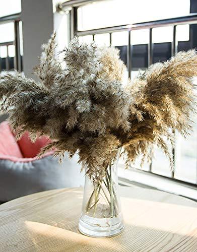 15 floreros decorativos para plantas secas de pampa, diseño moderno, creativo, flores preservadas hechas a mano para mujeres, esposa, novia en el día, cumpleaños, día de la madre.