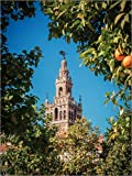 Poster 30 x 40 cm: Sevilla - La Giralda von Alexander Voss
