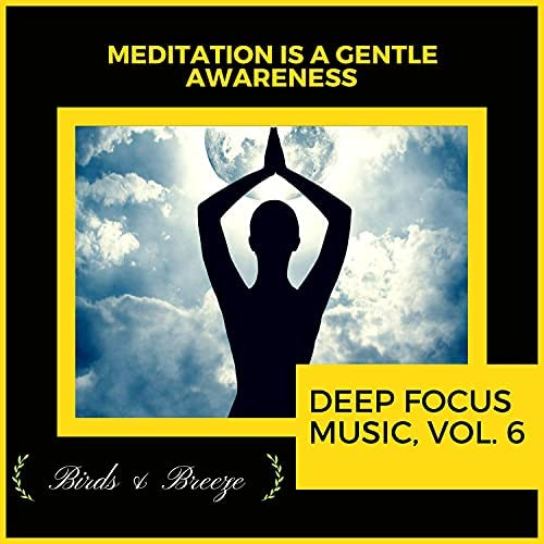 RauDrAE, Cleanse & Heal, Andrew Kimberley, Zen Town, PuRe Alphaas, Serenity Calls, Maha Lakshmi, Siddhi Mantra, Power Diggers, The Inner Chord, Universal Mob, Ambient 11, Mystical Guide, Shining Shiva, Liquid Ambiance, Zen Waver, Sapta Chakras, Ultra Healing, Divine KaHiL, Dr. Bendict Nervo, Spiritual Sound Clubb & Forest Therapy