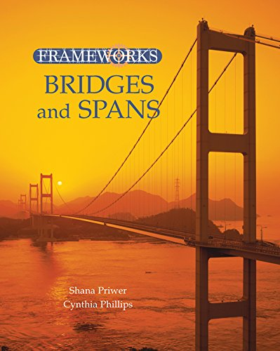 Bridges and Spans (Frameworks) (English Edition)