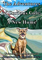 The Adventures of Curious Colt: A New Home
