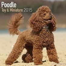 By MegaCalendars Toy & Miniature Poodle Calendar - Just Toy & Miniature Poodle Calendar - 2015 Wall calendars - Dog C [Calendar]
