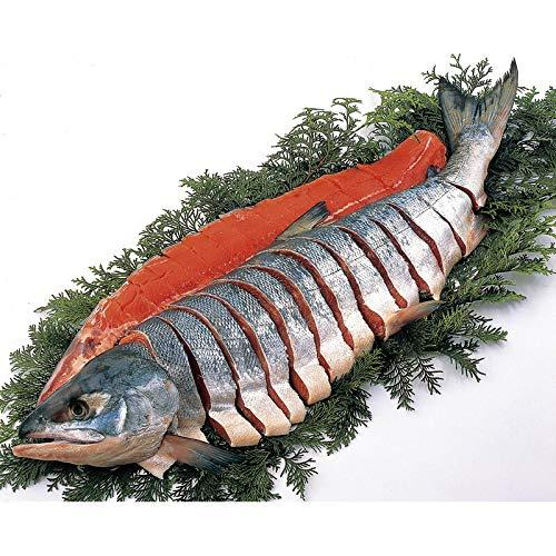 北海道雄武産天然新巻鮭姿造り切り身 【さけ しゃけ 魚 魚介 1匹 切れてる 国産 贅沢 美味しい おいしい うまい お取り寄せグルメ お取寄せグルメ 6500】
