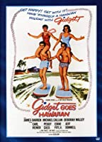Gidget Goes Hawaiian [DVD]