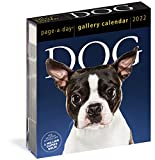 Dog Page-A-Day Gallery Calendar 2022: Stunning portraits that speak to the dog lovers soul.