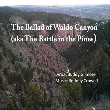 Ballad of Waldo Canyon - Single