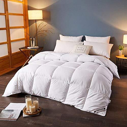 CHOU DAN EdredóN NóRdico Bicolor,Kingsize Duvet 13.5 TOG,Linen Duvet All-Season White Duvet Super Soft Duvet 180 * 220cm 4000g