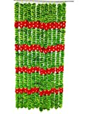 AFARZA; CHOICE GOOD FEEL GOOD Artificial Flower Garland Toran (Green Red, 2 Pieces)