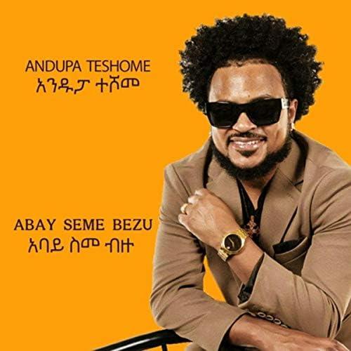 Andupa Teshome