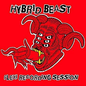 Hybrid Beast