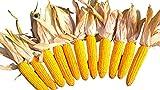 Mais,10 Maiskolben für Kaninchen, Kleintiere, Deko, handgepflückt direkt vom Bauernhof (Naturprodukte Brenner)