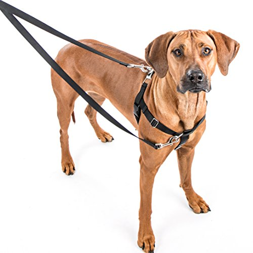 "2 Hounds Freedom No-Pull Dog Harness Training Package: Velvet Padding, Multi-Function & USA Made! (Leash Included), Medium (5/8"" Wide), Green"