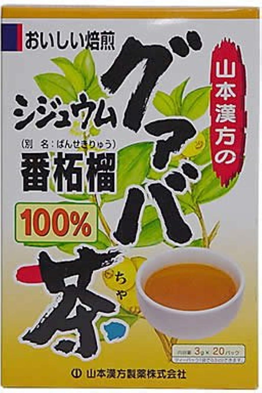 盆ベーリング海峡毛布山本漢方製薬 シジュウムグァバ茶100% 3gX20H