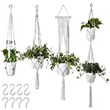 Flexzion Hanging Plant Hanger Boho Macrame Plant Holder 4Pcs Variety Pack with C & S Hooks Flower Pot Hand Woven Cotton Rope Basket Bohemian Home Decor f/Living Room Bedroom (Plant Pot Not Included)