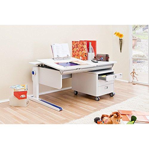 Hot Sale Moll Champion Kids Adjustable Left Up Desk with 8 Color Trim Pack