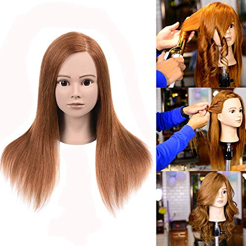 100% Human Hair Mannequin Head For Braiding Manikin Head For Hairdresser Professional Cosmetology Mannequin Head With Human Hair Auburn Brown 16 Inches (Not Included Mannequin Stand)