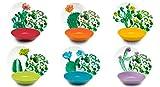 Excelsa Color Cactus Servizio Piatti 18 Pezzi, Porcellana e Ceramica, Multicolore, unità