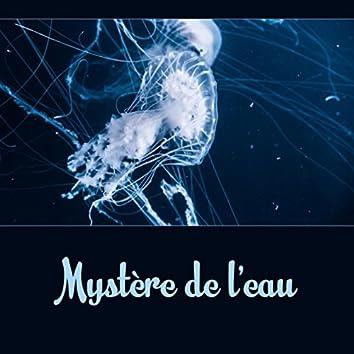 Mystère de l'eau - Guérison naturelle, L'homéopathie, Bruits de l'eau (Rivière, Pluie, Ruisseau de montagne, Chute d'eau, Océan)