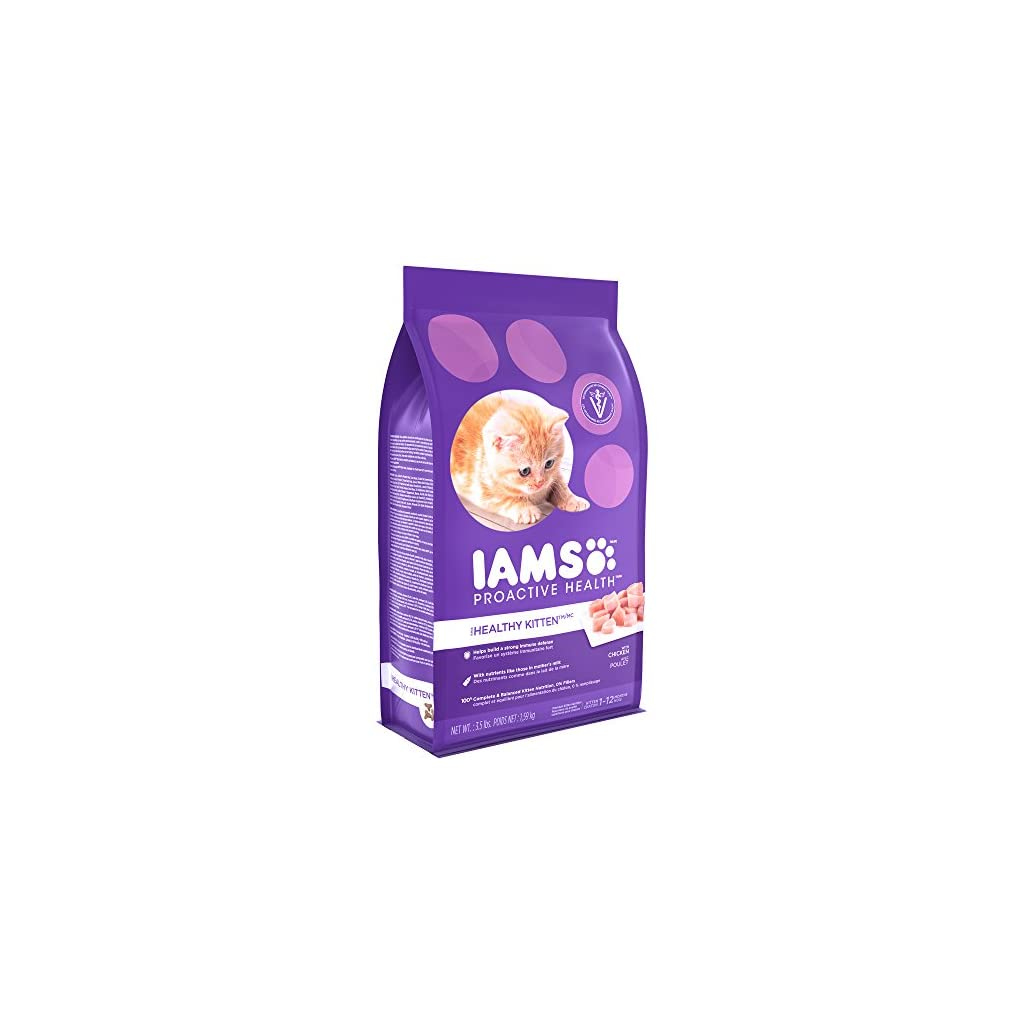 Best Iams Cat food for your Cat or Kitten