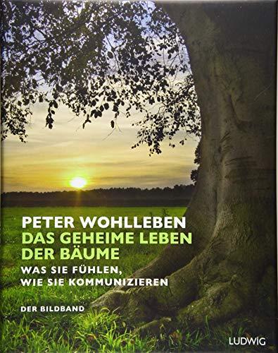 Das geheime Leben der Bäume: Was sie fühlen, wie sie kommunizieren. Der Bildband. Mit dem vollständigen Text der Originalausgabe