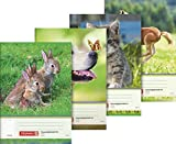 Brunnen–Animal 104681402libro de deberes A5, 48hojas, 4diseños)