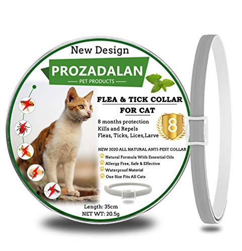 Collare Antipulci per Gatti, 100% di ingredienti naturali, trattamento e prevenzione delle pulci e delle zecche di 8 mesi, 35 cm regolabile e impermeabile, taglia unica per tutti i gatti (1pack)