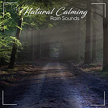 #14 Natural, Calming Rain Sounds for Ultimate Relaxation