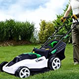 QILIN 1800W Electric Lawn Mower (Cutting Width 42 cm, Cutting Height Adjustable, Recommended Area 150 Square Meters)