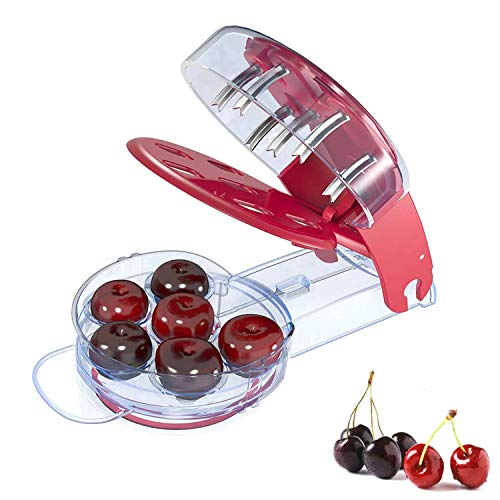 Gxhong Cherry Pitter Tool amp Olive Tool Multiple Fruit Remover Tool 6 Cherries at Once Remover with Pit and Juice Container for Making Cherry Pie and Jam