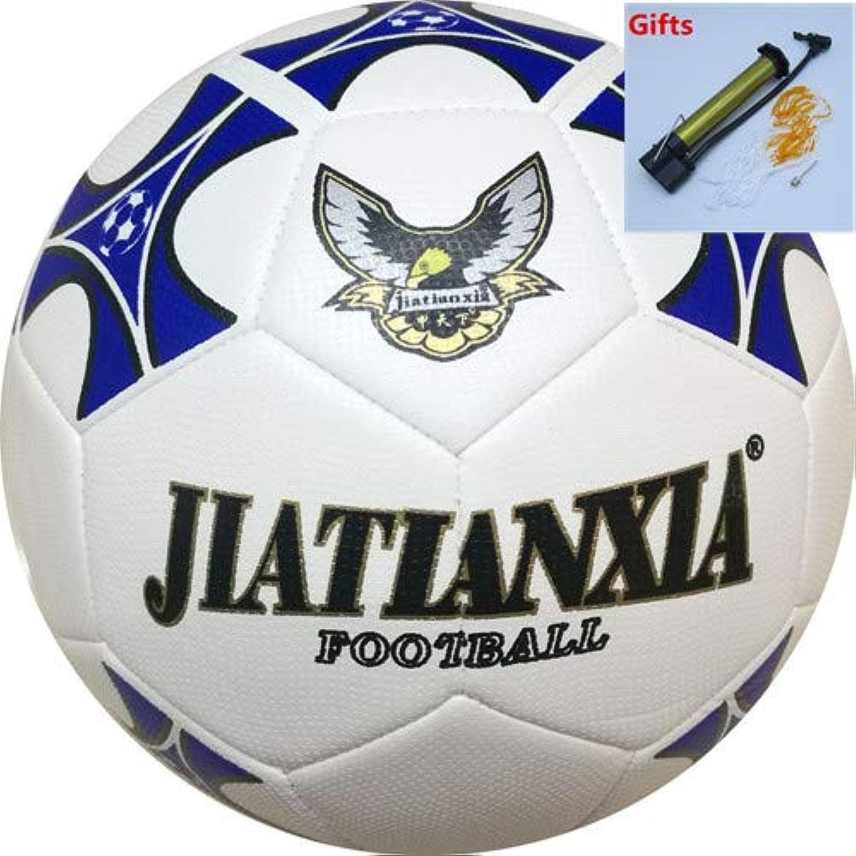 Size 4 Balls for Futsal Pu Training Football for Men and Women Soccer Balls High Quality Futbol topu boyutu 5 Z071OLF   blueee