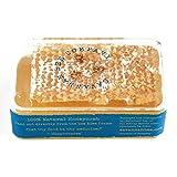 Savannah Bee Company Raw Acacia Honeycomb 5.6 oz each (1 Item Per Order, not per case)