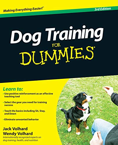 Best Training Methods For Pitbulls