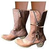 Dasongff Botas anchas para mujer con tacón largo, botas de equitación para invierno, botas informales para motero, botas de nieve antideslizantes con tacón en bloque retro de cowboy