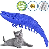 FULNEW Cat Toothbrush Catnip Toys for Cat Toys Interactive Kitten Toothbrush Chew Toy Shrimp Shape Molar Stick for Teeth Cleaning Dental Care 100% Natural Rubber Bite Resistance (Blue)