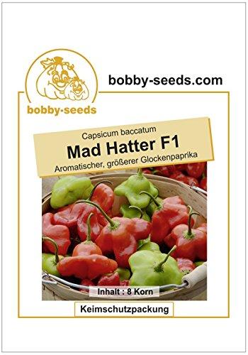 Bobby-Seeds Paprika-Samen Mad Hatter F1 Glockenpaprika Portion