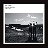 Pink Floyd: The Best Of The Later Years 1987 - 2019 [Vinyl LP] (Vinyl (Best of))