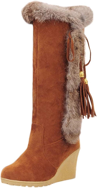 Anxinke Women Fashion Warm Faux Suede Tassel Wedge Heel Snow Boots