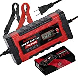 Autobots EnerGen Smart Battery Charger | Fully Automatic 12v & 24v Car, Auto,...