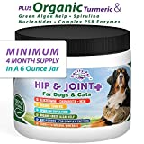 Novity Pet Glucosamine | Chondroitin | MSM | Spirulina | for Dogs and Cats | 100% Natural and Organic Hip and Joint Supplement for Dogs and Cats | Made in The USA | 6 oz Powder