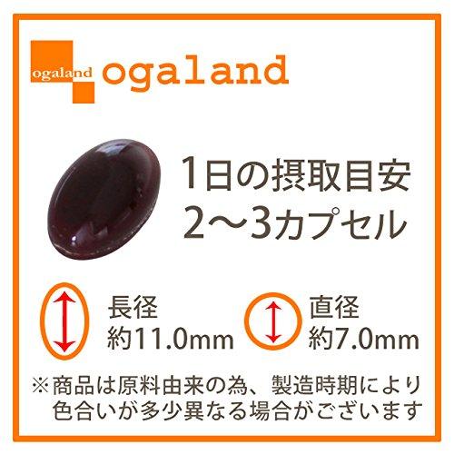 [ogaland公式]レスベラトロール&トマトリコピン(3個セット・約3ヶ月分)レスベラトマトリコピン
