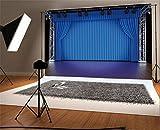 YongFoto 3x2m Vinilo Fondo de Fotografia Luces del Escenario Espectáculo de Teatro de Cortina Azul RIC Wood Plank Telón de Fondo Fiesta Boda Adulto Retrato Personal Estudio Fotográfico Accesorios