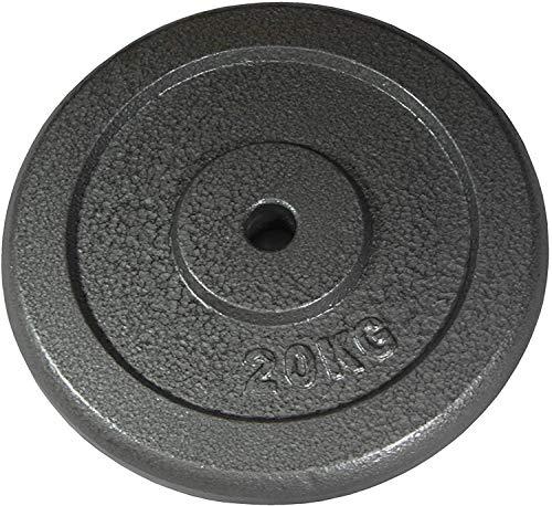 Lisaro Juego de discos de pesas de 20 kg, 2 discos de 10 kg, orificio de 30/31 mm de diámetro, discos de hierro fundido profesionales