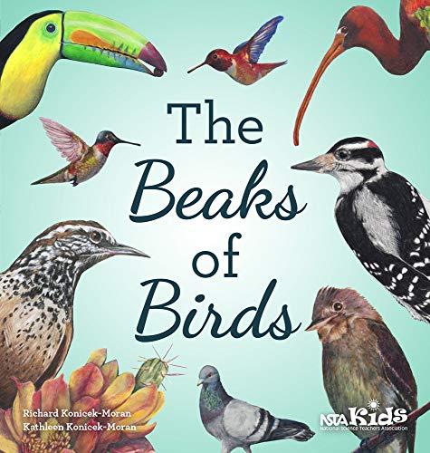 The Beaks of Birds