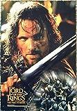 1art1 Der Herr Der Ringe - Die Zwei Türme, Aragorn Poster